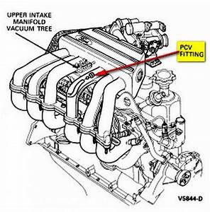 1993 F150 4 9 Engine Diagram