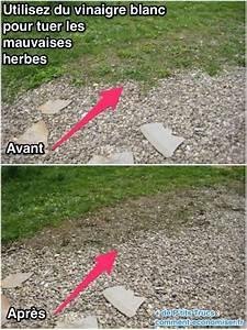 Comment Empecher L Herbe De Pousser Dans Le Gravier : empecher l herbe de pousser dans les massifs toile de ~ Dailycaller-alerts.com Idées de Décoration