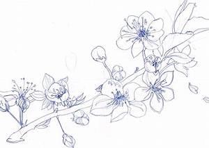 Dessin Fleur De Cerisier Japonais Noir Et Blanc : cerisier tatouages pinterest cerisier tatouages et ~ Melissatoandfro.com Idées de Décoration