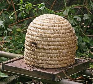 Types of Beehives - Home Farmer