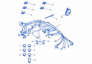 Triumph Tiger 1050 2005 Electrical Circuit Wiring Diagram  U00bb Carfusebox