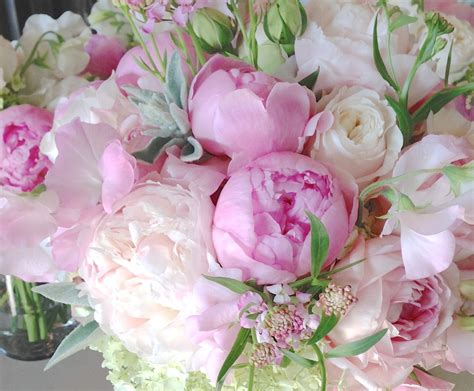 peonies and roses bouquet christopher flowers