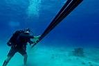 承載網絡的海底電纜,原來很脆弱? - *CUP