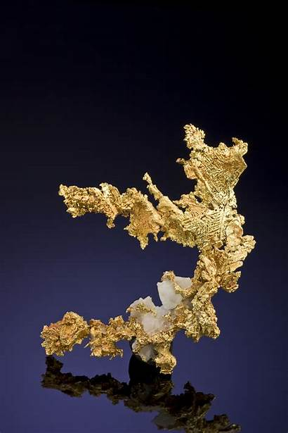 Gold Pyrite Between Differences Found Nugget Fooled