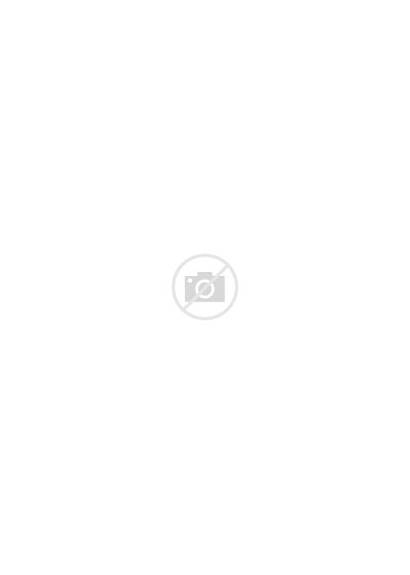 Dahlia Coloring Flower Birth Dalia Month Marguerite