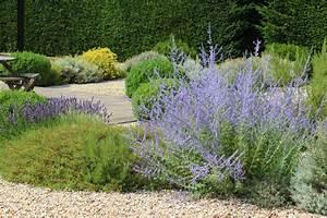 Die Schönsten Steingärten : pflanzen f r den kiesgarten eine auswahl der sch nsten ~ Bigdaddyawards.com Haus und Dekorationen