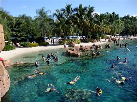 Discovery Cove Orlando Tickets by Discovery Cove Disney And Orlando Geeks