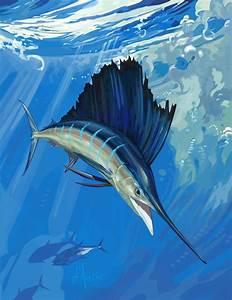 Sailfish Art