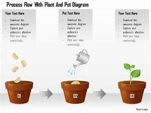 1114 Process Flow With Plant And Pot Diagram Powerpoint