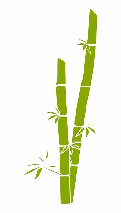 Bamboo Clipart Clip Clipartmag
