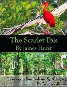 Sample Essay Proposal The Scarlet Ibis Symbolism Essay Proposal Essay Ideas also Yellow Wallpaper Analysis Essay Scarlet Ibis Symbolism Essay Scramble For Africa Essay Scarlet Ibis  How To Use A Thesis Statement In An Essay