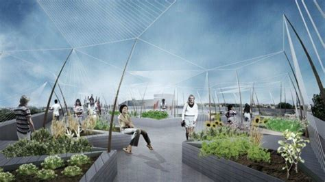 orti in terrazza le vigne sui tetti di new york city i grandi vini
