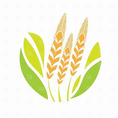 Agriculture Clipart Clip Agricultural Vector Emblem Tarım