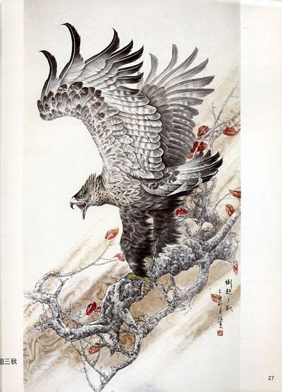 beautiful awesome  birds  pinterest
