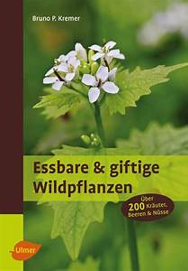 Heimische Pflanzen Für Den Garten : giftpflanzen im garten ~ Michelbontemps.com Haus und Dekorationen
