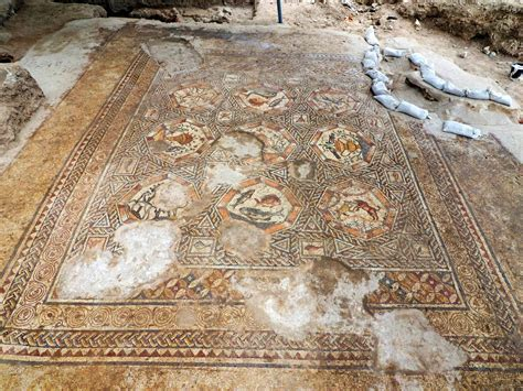year  magnificent mosaic unearthed  israel