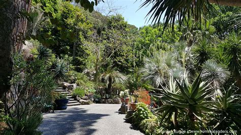 Botanischer Garten Ischia reisetipps f 252 r ischia rom mal anders