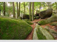 Im Wald der großen Steine Forum für Naturfotografen