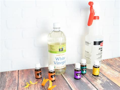 How To Make Everyday All Natural Cleaner  Whisking Mama