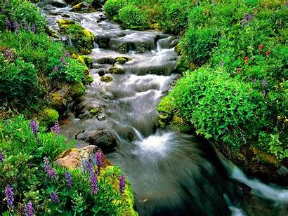 Natural Beauty Nature Wallpapers Google Background Stream