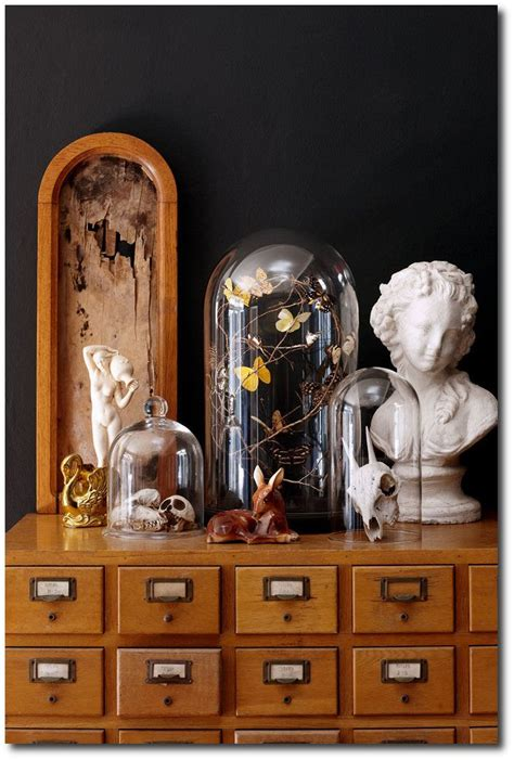 45 best ideas about cabinet de curiosit 233 on statue of a bunny and statues