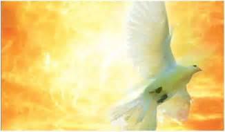fire ozarks holy spirit conference grace life church