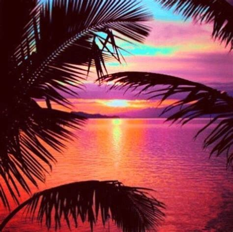 Summer Instagram Wallpapers by Amazing Tropical Sunset Summer Sunset Scenic Tropical
