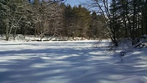 New Hampshire research says climate change could ...