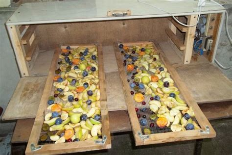 Универсальная сушилка для фруктов и овощей своими руками