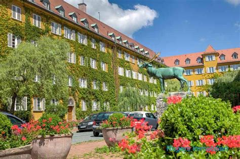 Immobilien Kaufen München Moosach immobilienpreise moosach rogers immobilien