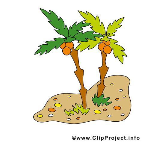 palme clipart
