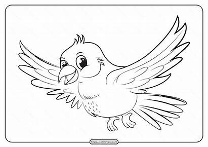 Printable Coloring Bird Pages Animals Pdf Email