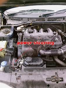 Xsara 1 9 Diesel Sepentine Belt