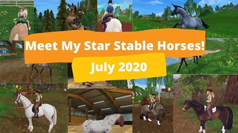 stable star horses