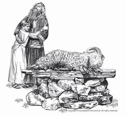 Sacrifice God Cain Abel Blood Told Abraham