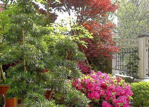 terrazze fiorite terrazze fiorite cerca con terrazze fiorite