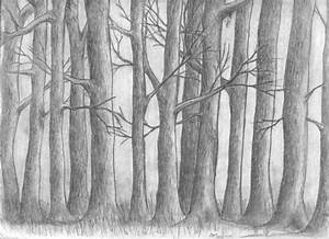 Old Forest sketch by Clay-Mation on DeviantArt