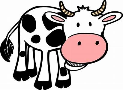 Clker Cow Clip Chewing Clipart Svg