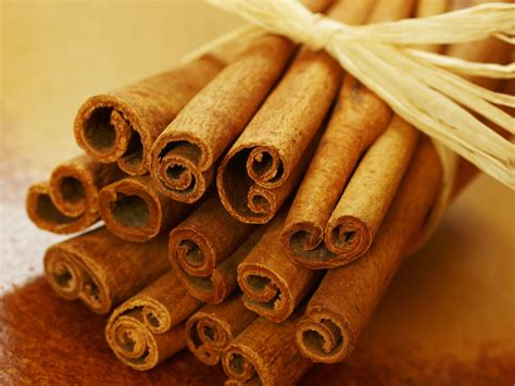 Cinnamon's Spicy History - HISTORY