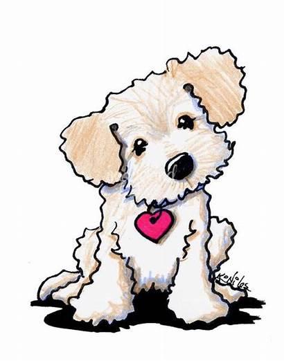 Doodle Puppy Dog Labradoodle Goldendoodle Clipart Golden