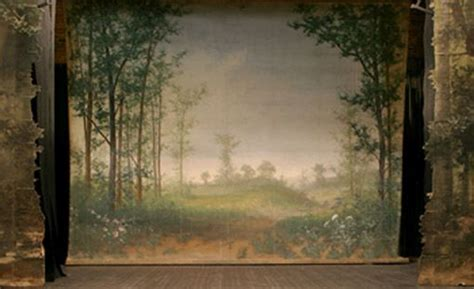 printed backdrop  beautiful landscape concert
