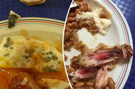 cuisine sodexo soldiers reveal disgusting army sodexo food on daily