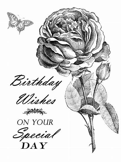 Birthday Printable Rose Wishes Stamps Digital Card