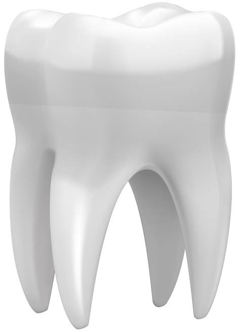 tooth png clip art  web clipart
