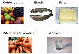 Kohlenhydrate fette eiweiße tabelle