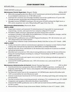 6 government resume sample invoice template download With government resume samples