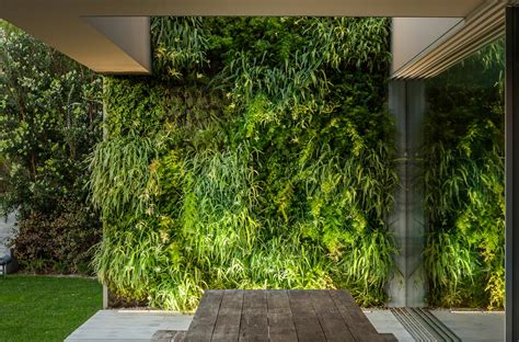 Vertical Garden by Vertical Garden Design Villa Cascais