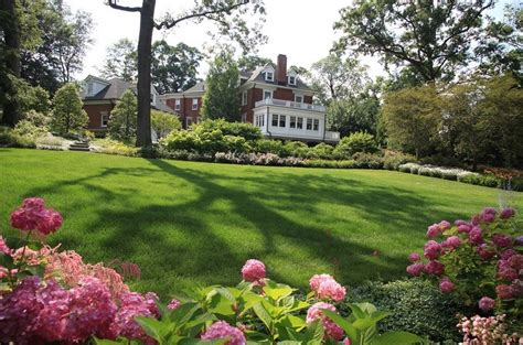 essential summer lawn care tips  home freshomecom