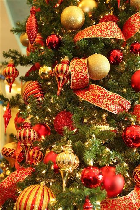 amazing red  gold christmas decor ideas digsdigs
