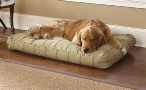 Chew resistant dog beds toughchewr dog bed orvis for Good dog bed for chewers